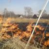 Останови поджоги сухой травы!