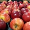 На нижегородском рынке обнаружили около трехсот кило польских яблок